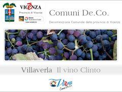 Il Vino Clinto - prodotto De.Co. di Villaverla