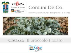 Creazzo - Il broccolo fiolaro