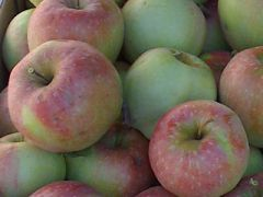 La mela rosa di Caltrano