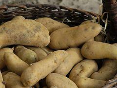 La patata posenata (Posina)